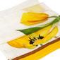 Tulipani gialli